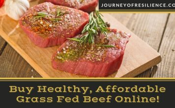 Grass Fed Grass Finished Affordable Mail Order Beef